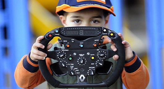 Руководство пользователя рулевого колеса Формулы-1