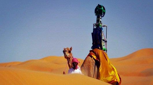 Google использует верблюдов для съемки панорам пустыни
