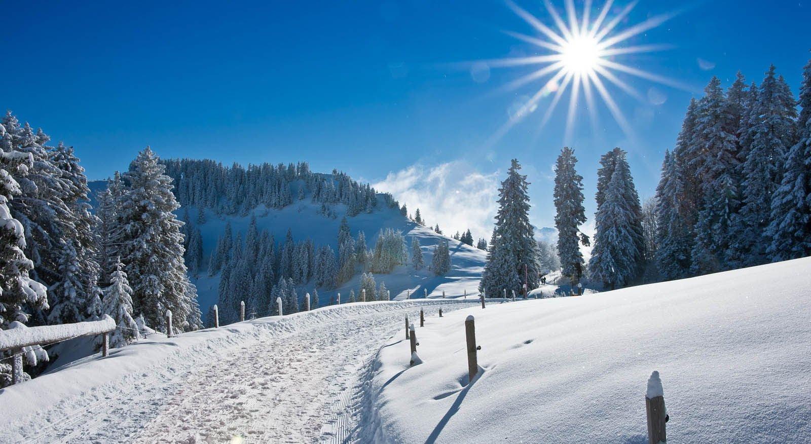 фото природа зимой скачать бесплатно