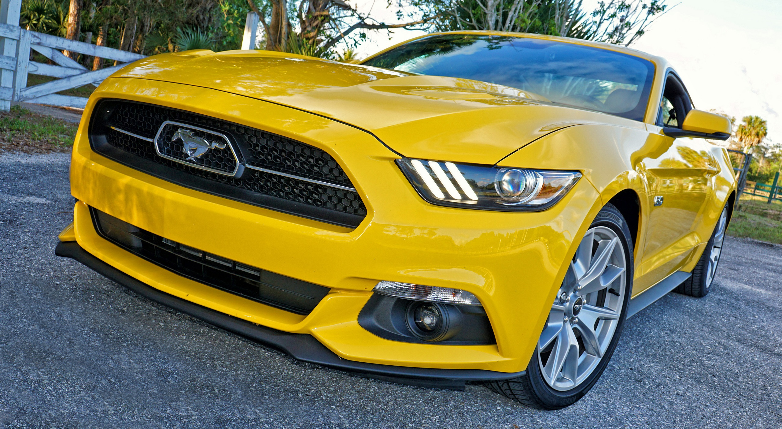 Обзор: 2015 Ford Mustang GT фото