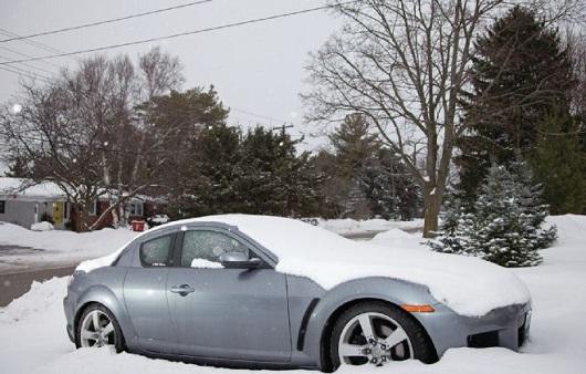 сколько минут надо проджект авто зимой: