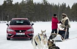 Кто быстрее на льду, собачья упряжка или автомобиль