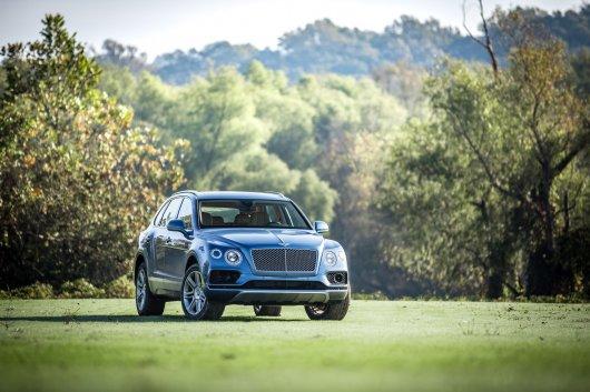 Bentley использует редчайшие породы деревьев в своих автомобилях