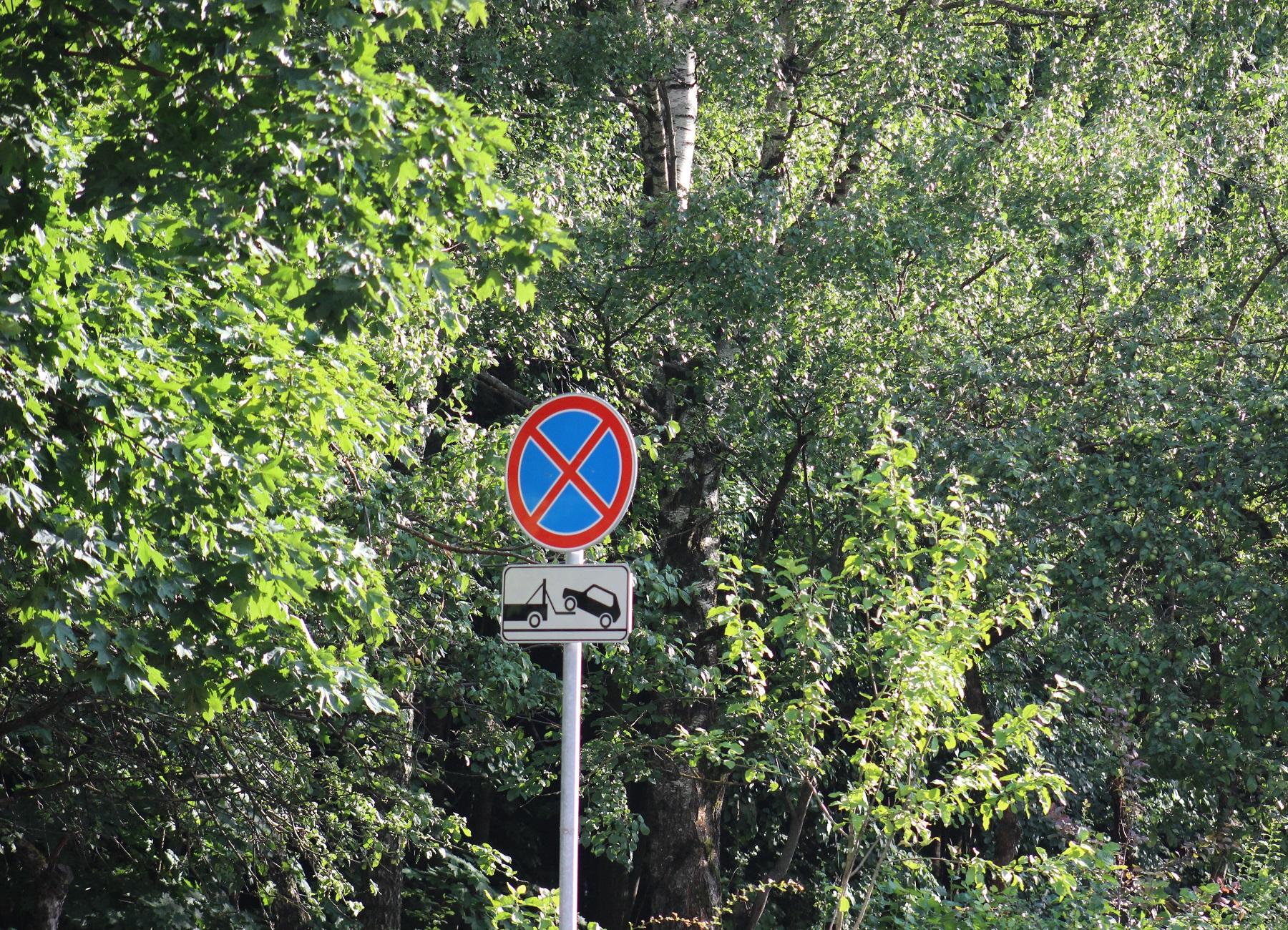 Знак стоянка запрещена когда можно останавливаться