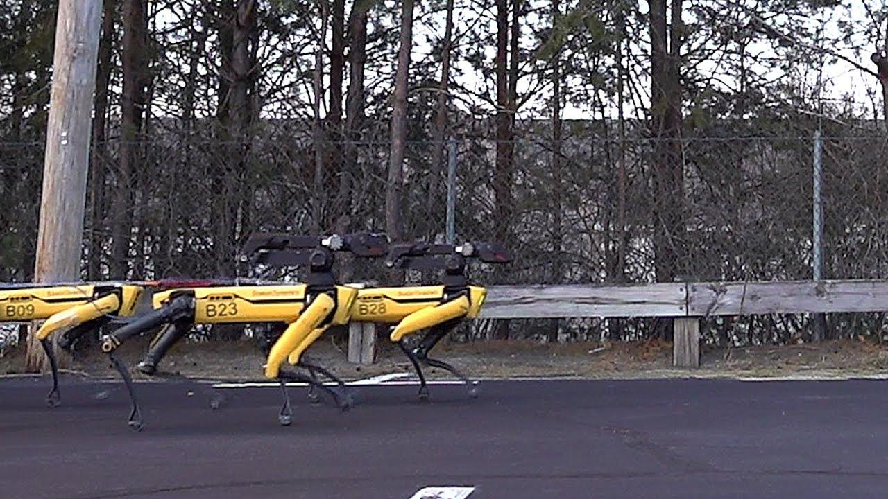 Для буксировки грузовика требуется всего 10 собак-роботов